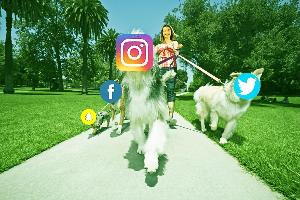 les réseaux sociaux sont mes fidèles compagnons